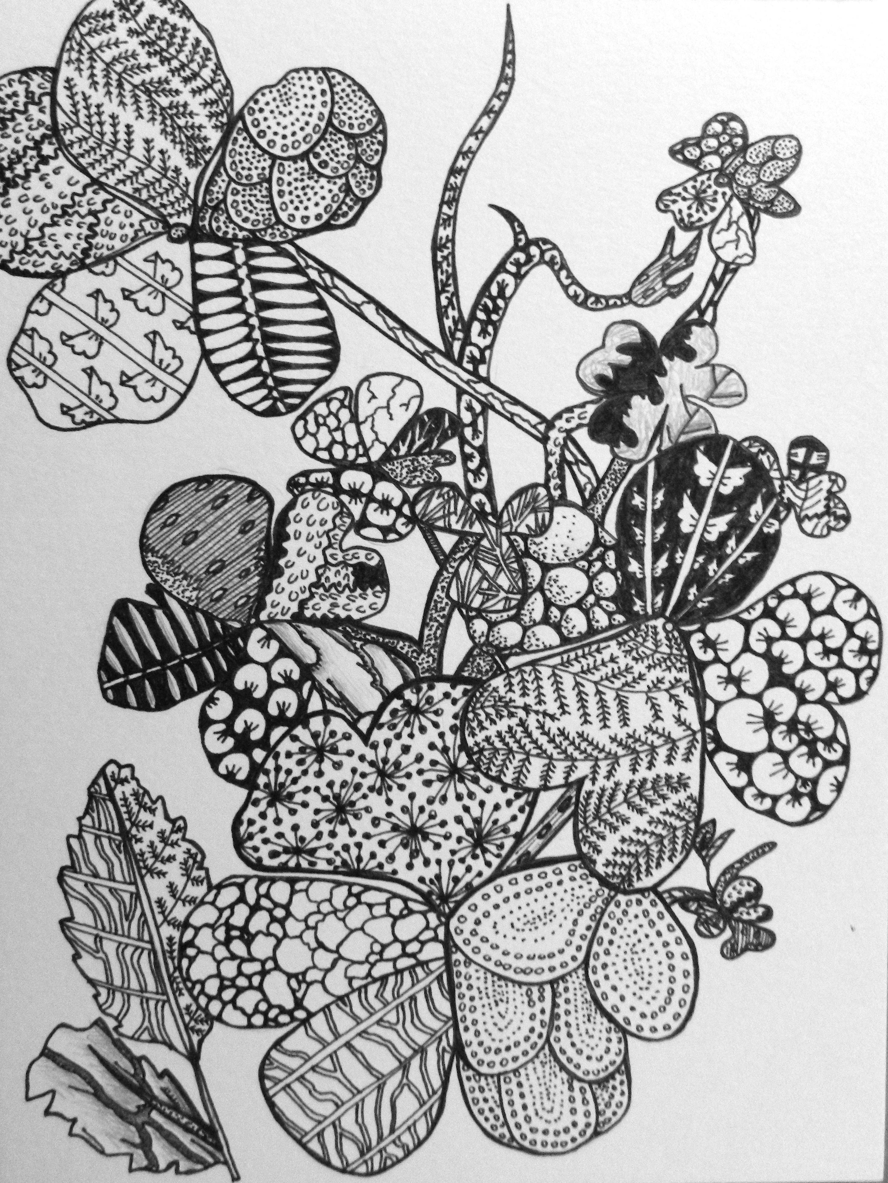 Nature Zentangle Art Challenge Day Seven Artful Explorations In